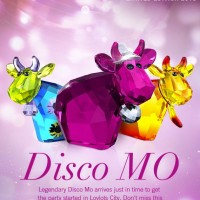 Swarovski Disco Mo – 3 Limited Edition Cows For 2013